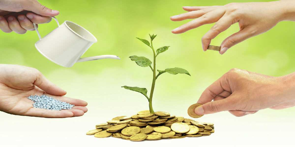 Discover an article families for life - Money saving tips in gardening ...