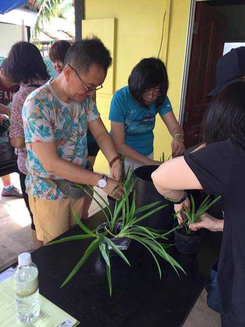 Planting potted plants at D'Kranji Farm Resort