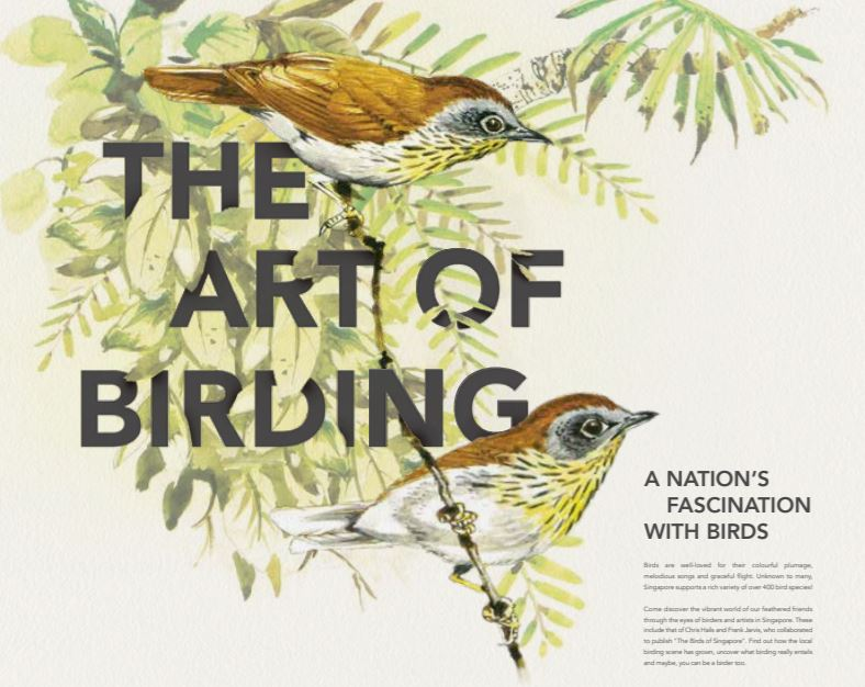 The Art of Birding